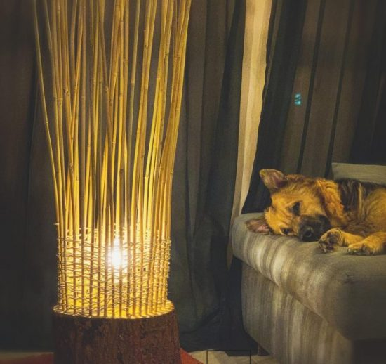 tree trunk nest floor lamp